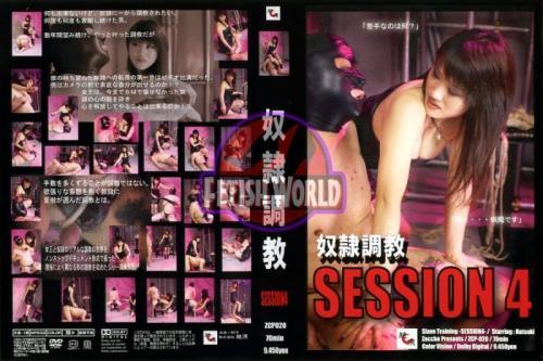 [ZCP-020] 奴隷調教 SESSION 4 Rape Torture